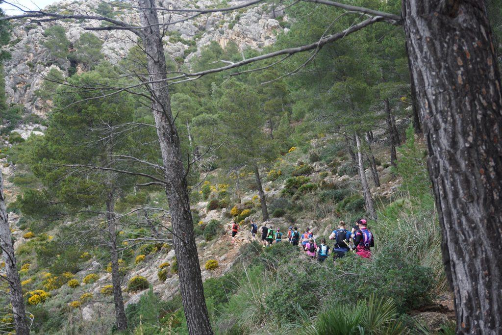 MallorcaHolidayTrails (6)